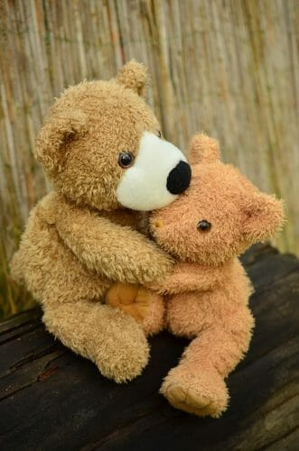 teddy-1113120_960_720
